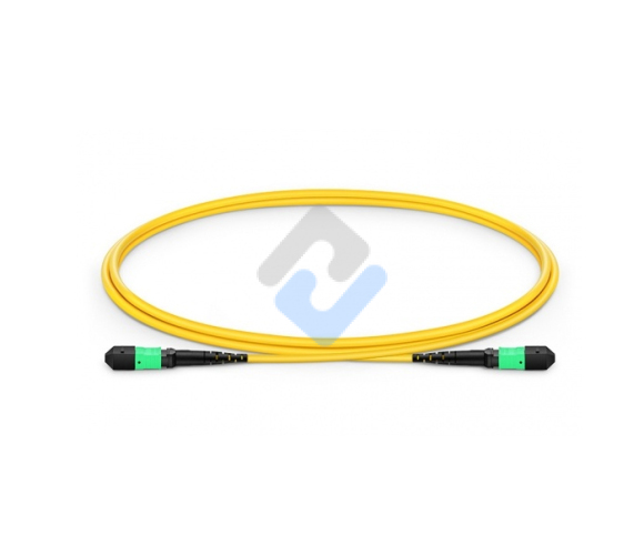 MTP to MTP Female, OS2 OFNP Type B, 12 Fibers Elite Trunk Cable