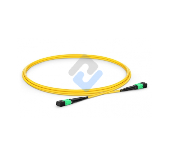 MTP to MTP Female, OS2 LSZH Type B, 12 Fibers Elite Trunk Cable